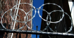 barbed wire olypic circles
